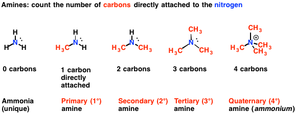 Amines primary secondary tertiary