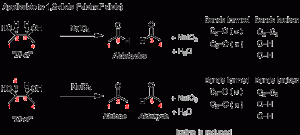 Introduction to Oxidative Cleavage Reactions