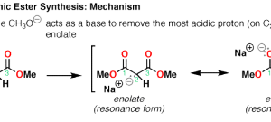 The Malonic Ester Synthesis
