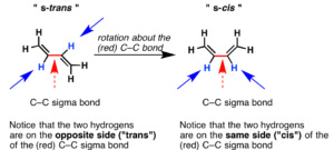 s-cis and s-trans
