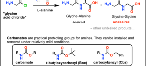Protecting Groups for Amines – Carbamates